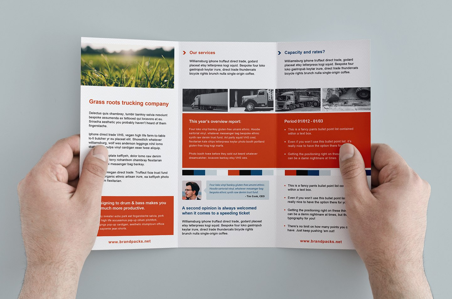 Free Trifold Brochure Template In Psd Ai  Vector  Brandpacks In Tri Fold Brochure Template Illustrator