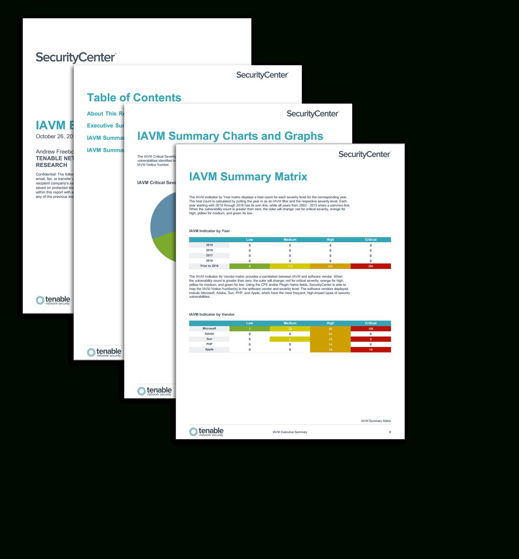 Iavm Executive Summary Report  Sc Report Template  Tenable® Inside Executive Summary Report Template