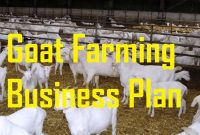 Livestock Business Plan Template ~ Tinypetition inside Livestock Business Plan Template