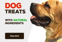 Natural Solutions For Itchy Dogs Natural Dog Treats My Itchy Dog for Dog Treat Label Template