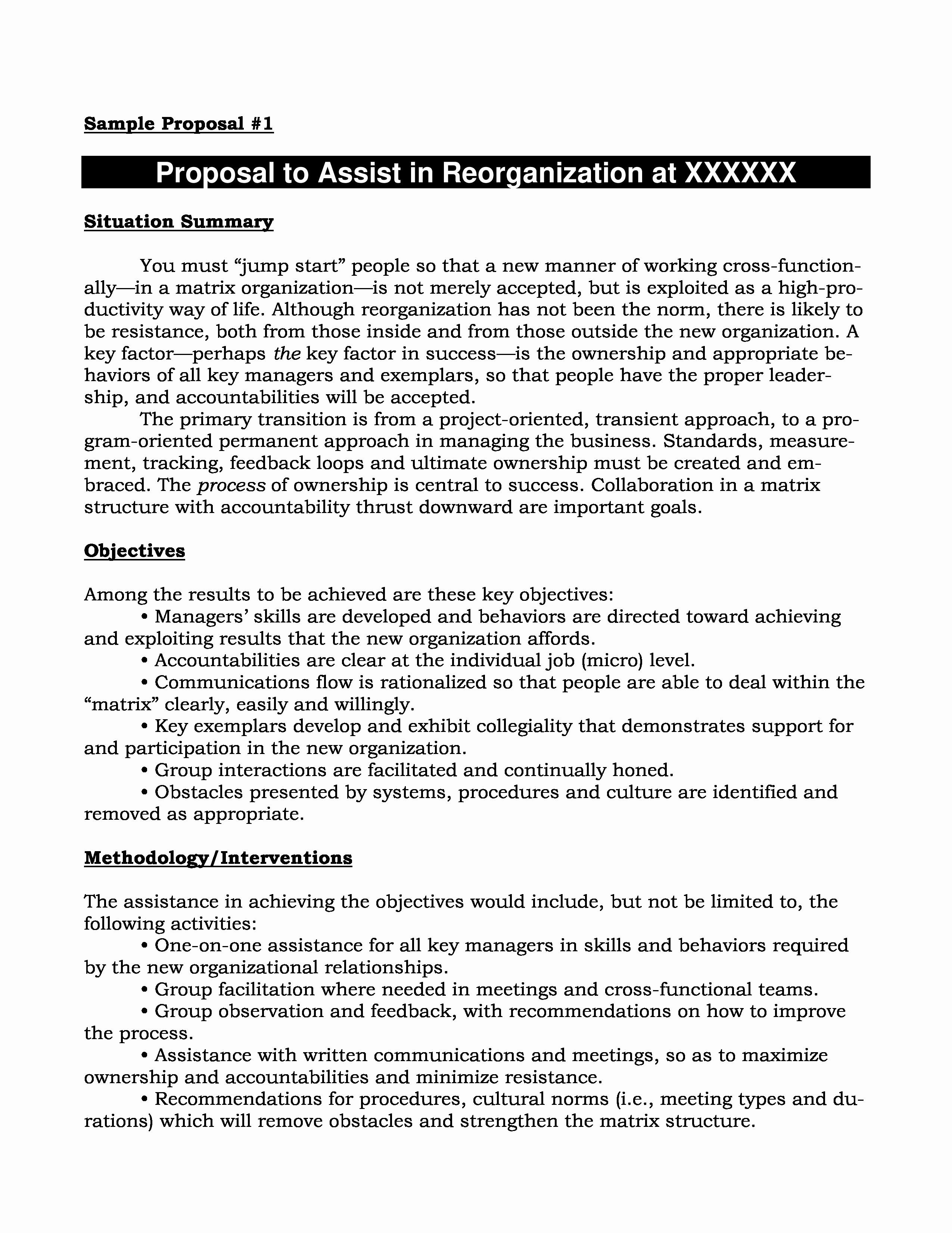 New Business Restructuring Plan Template  Wattweiler Pertaining To Business Reorganization Plan Template
