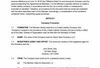 Operating Agreement Template For Llc Multi Member Pdf Wondrous pertaining to Brand Partnership Agreement Template