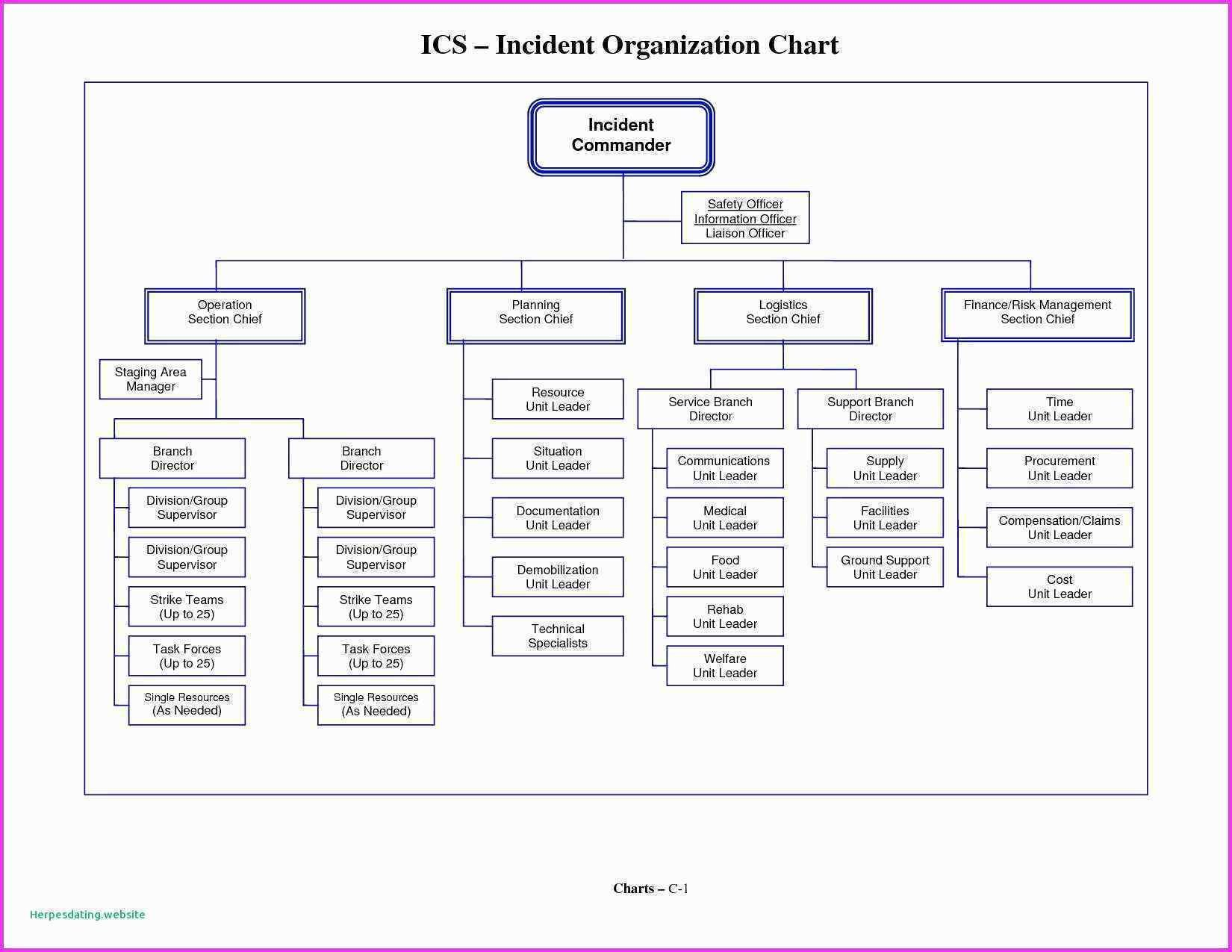 Organogram Template Word Best Of Blank Flow Chart For Free Intended For Free Blank Organizational Chart Template