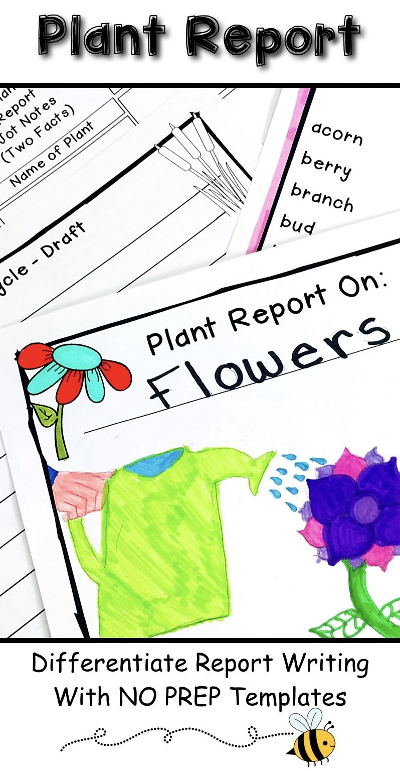 Plant Research Project  Report Writing Templates  My Tpt Products In Research Project Report Template