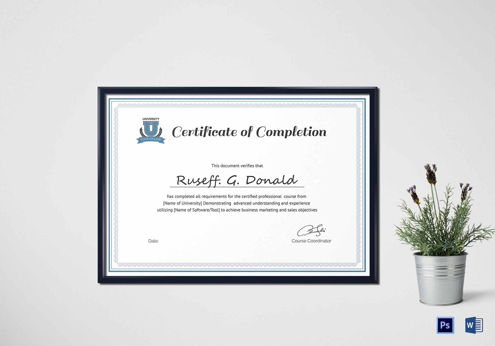 Professional Course Completion Certificate Design Template In Psd Word Regarding Professional Certificate Templates For Word