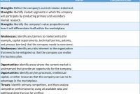 Seo Report Template Excel  Kerstinsuddese with regard to Ssae 16 Report Template