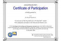 Template For Certificate Of Participation  Sansurabionetassociats throughout Sample Certificate Of Participation Template