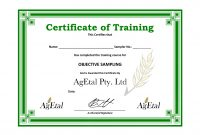 Template Ideas Doc Training Certificate Free Templates L with regard to Training Certificate Template Word Format