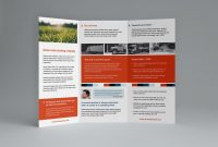 Template Ideas Indesign Trifold Brochure Templates Formidable with Adobe Tri Fold Brochure Template