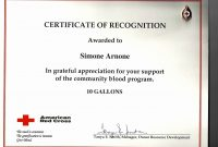 Template Ideas Silent Auction Certificate Gift Fresh Program with Donation Certificate Template