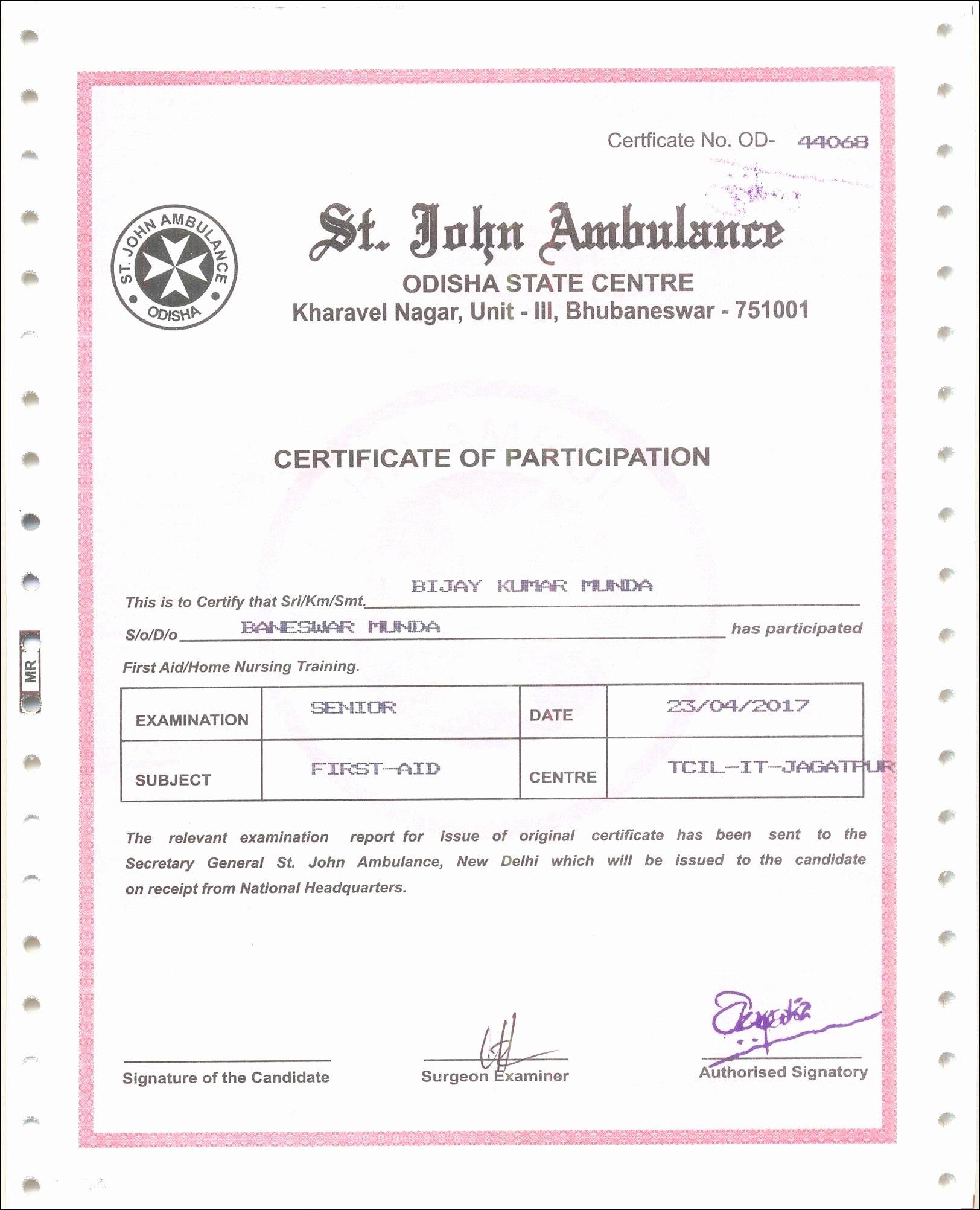 Translation Certification Statement Of American Birth Certificate Intended For Birth Certificate Translation Template Uscis