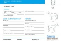 Travel Confidently  News At Cummings School Of Veterinary Medicine With Horse Stall Card Template