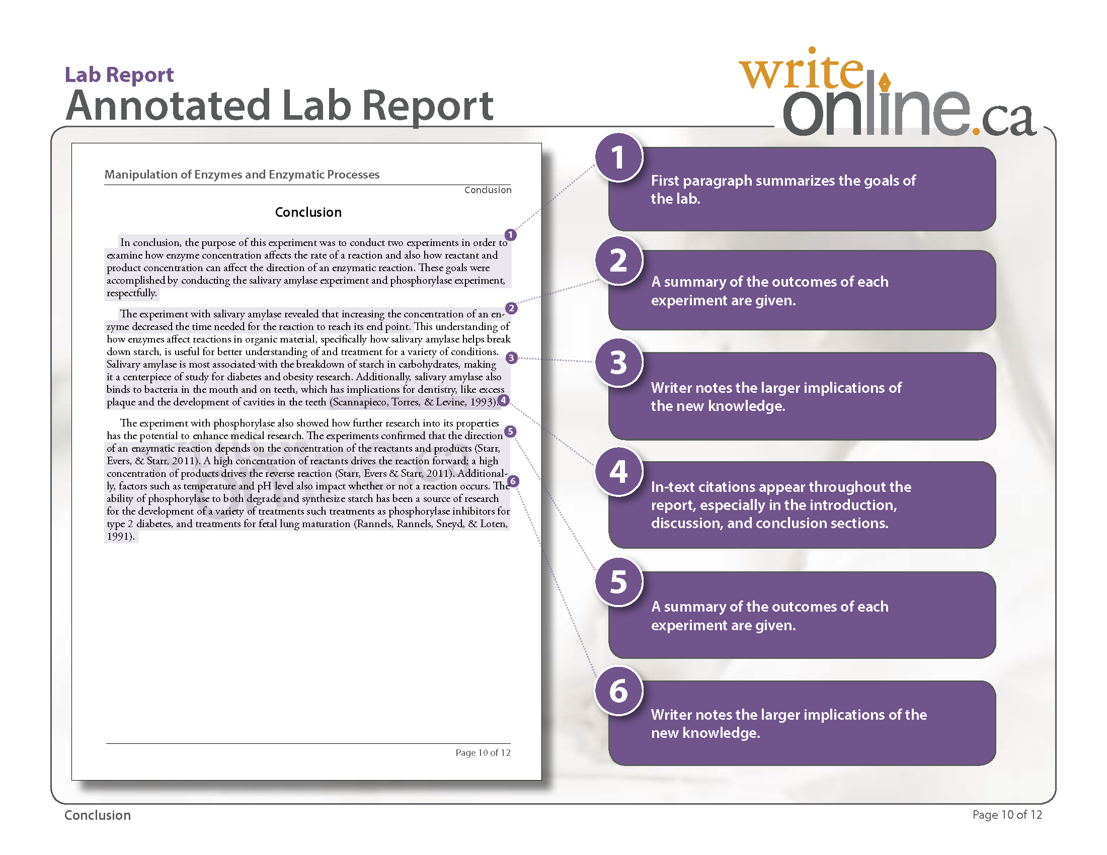 Write Online Lab Report Writing Guide  Parts Of A Lab Report With Regard To Lab Report Template Middle School
