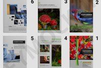 Zoo Photography Brochure Template  Eymockup for Zoo Brochure Template
