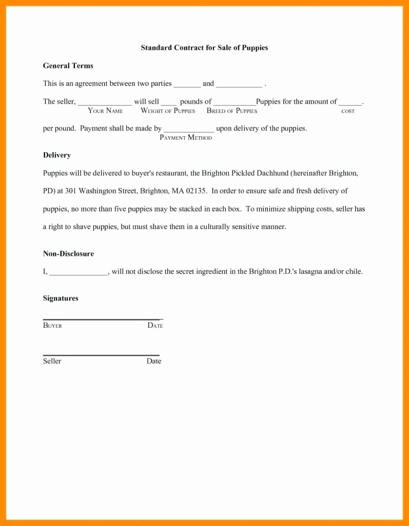Flat Stanley Letter Template Examples  Letter Template Collection Throughout Flat Stanley Letter Template