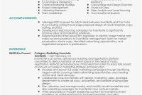 Program Proposal Template  Lera Mera with Advertising Proposal Template